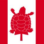 SDR_Gerry-la-tortue-federales-tb